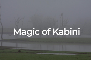 Magic of Kabini
